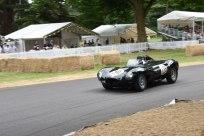 C13 - Jaguar D Type, Christopher J Ball, 1955   6:3400