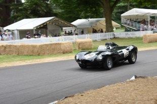 C13 - Jaguar D Type, Christopher J Ball, 1955 | 6:3400