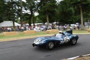 C13 - Jaguar D Type